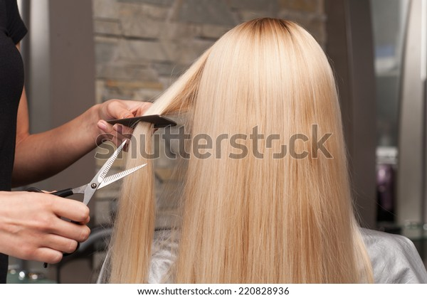Back view of woman getting new haircut by hairdresser at parlor. hairdresser cutting client's hair in beauty salon