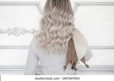 Back view of woman standing in hair salon and holding extensions of human hair, Balayage technique and extensions concept