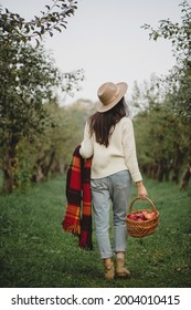 Back view of woman in straw hat, white sweater and jeans holdind plaid and basket full of aplle walking in autumn garden.