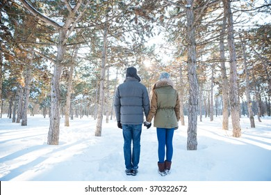 Back view of young couple holding hands and standing in winter park