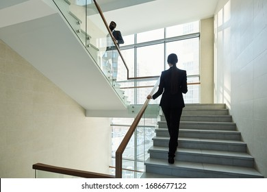 Back view of young elegant businesswoman following her African colleague while both moving upstairs inside modern office center