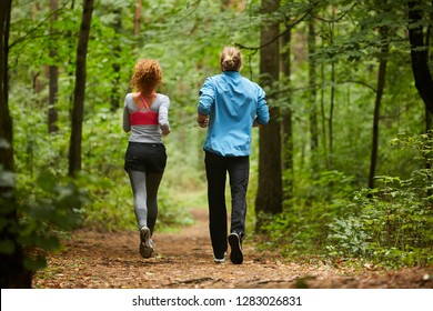 Back view of young sporty couple moving down forest path during jog training in the morning