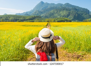 Back view of young tourist woman traveling in Sunhemp field (Crotalaria Juncea) at the foothills of Doi Nang Non mountain in Mae Sai district of Chiang Rai province, Thailand.