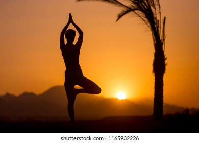 Back view of young woman doing fitness, yoga or pilates training, standing in asana Vrikshasana (Tree Pose) at sunset in picturesque location with mountains and palm trees