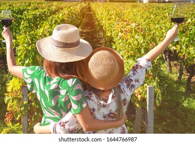 Back view of young women friends drinking red wine,which happy moment in vineyard in summer