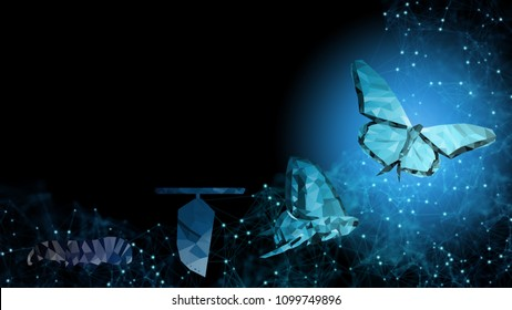 Background of abstract fintech financial technology transformation innovation like butterfly life cycle Imply future success of cashless world online digital banking growth freedom transaction concept