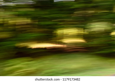 Background of abstract sunrays shining through the forest with motion blur sport effect. Green and yellow vivid colors in nature.