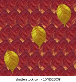 Background, Autumn Orange, Yellow and Red Leaves