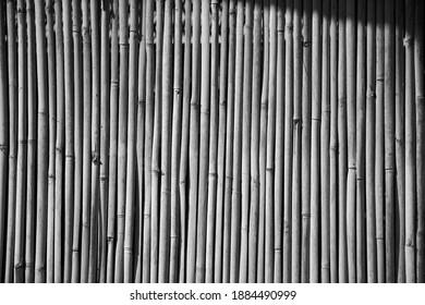background bamboo blackwhite style art