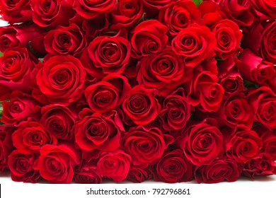 Background of a lot of beautiful red roses