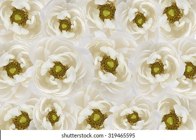 background of beige flowers
