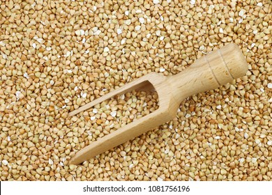 background of biologically grown organic buckwheat with a wooden scoop