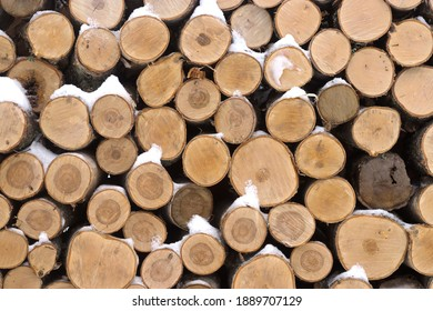 Background of birch logs, stacked on top of each other.
