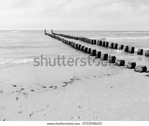 background-black-white-600w-1933948625.j