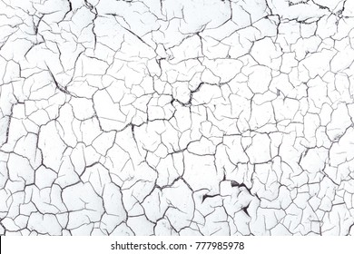 Background black and white texture of an old cracked door. Abstract texture and background for designers.
