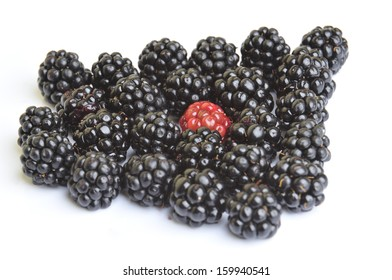 background blackberries fruit and red berry