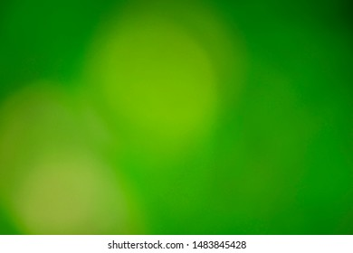 Background of blurred green color with circles