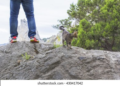 background blurred man traveler and his cat on top of the mountain admiring the contours of the rock Diva, Simeiz