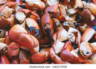 background of boiled crab claws