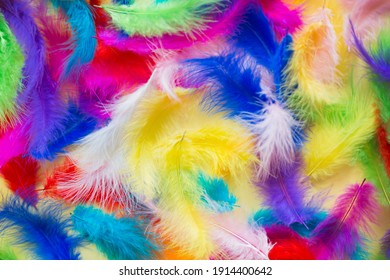 background of bright multicolored painted feathers.