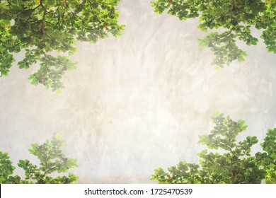 Background of cement wall texture with green leaves