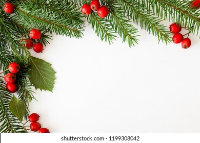 Background for Christmas and new year cards with a branch of spruce and red berries. Isolated. Copy space.