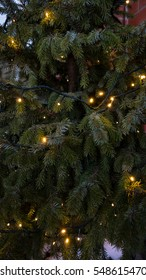 background of christmas tree with garland