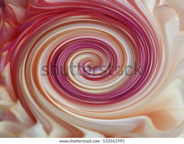 background, colorful  lines are twisted spiral.  brightly colored lines purple, white, yellow,red; violet, pink. for design.