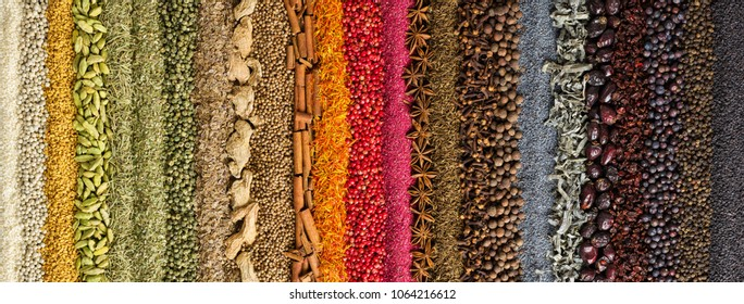 background of colorful spices and herbs. Collection of various seasonings