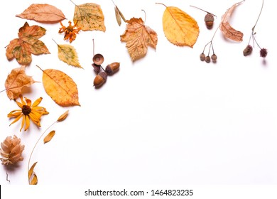 Background creative of yellow dry leaves, acorn, walnut, flowers. concept of autumn. Pastel colors. Top view, flat
