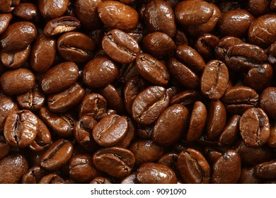Background of delicious shiny freshly roasted coffee beans
