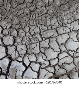 Background of dry cracked ground