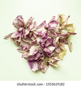Background from dry leaves of an orchid folded in the shape of a heart.