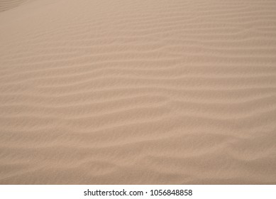 A background for Earth Day or beach concept of drifted sand