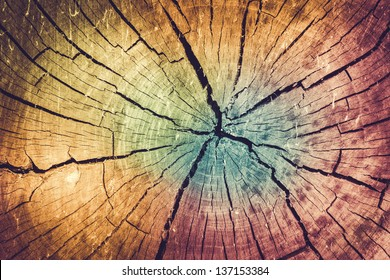 Background of Faded Color Toned Tree Stump with Natural Texture