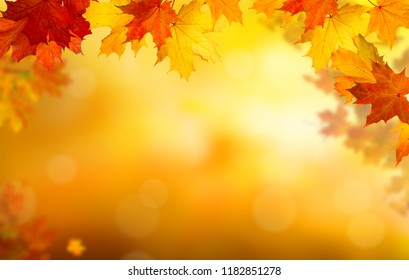Background of falling autumn leaves