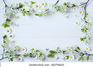 Background with flowering branches of plums, cherries,  daisies