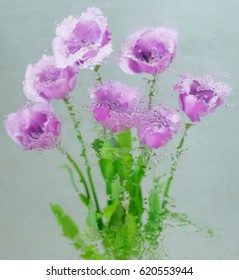 Background with flowers under glass with water drops on it
