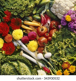 Background of flowers and vegetables