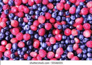 background of forest wild strawberry and bilberry
