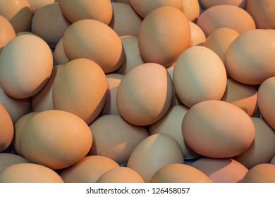 Background form many eggs on sunset light