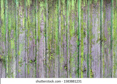 Background formed by a wall of wooden boards on which the remnants of old green paint.