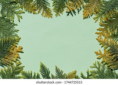 background-frame-green-shades-lined-260n