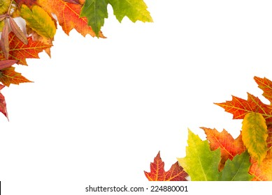 Background frame of isolated colorful autumn leaves top left and bottom right corner perfect for a party or wedding invite or card