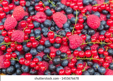 background of fresh berries. Raspberry currant blueberry