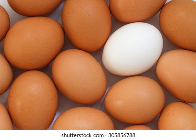 Background of fresh brown and white eggs.