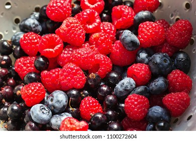 Background of fresh forest blueberries black currants, raspberries, black berries shot top down. Berries overhead closeup colorful assorted mix in a white bowl dish.