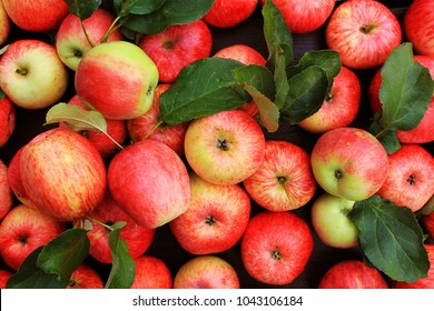 Background with fresh red apples . Top view