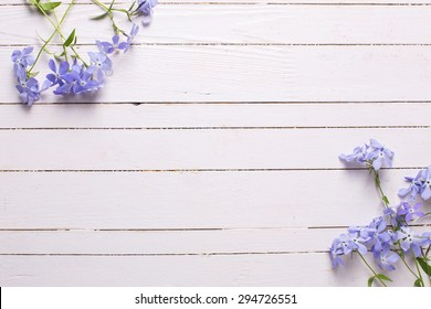 Background with fresh tender blue flowers on white wooden planks. Selective focus. Place for text.