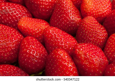 Background from freshly harvested strawberries